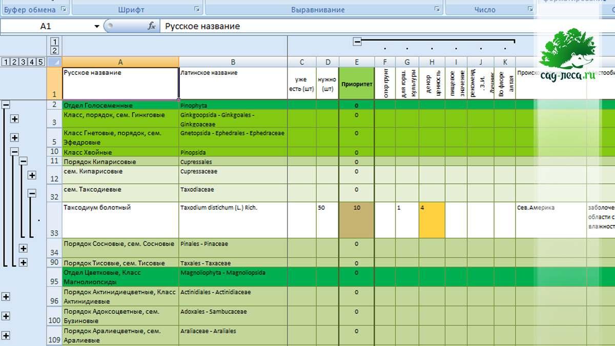 таблица планируемых растений