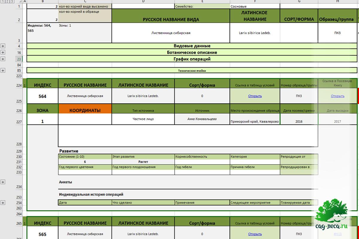 таблица карточек растений