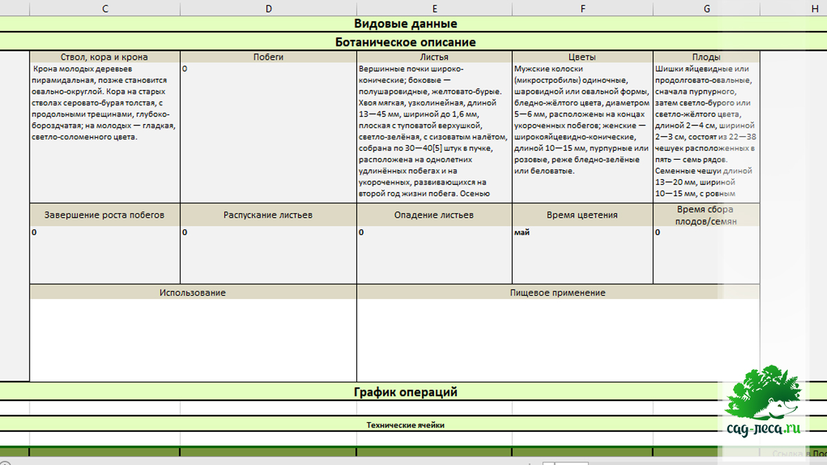 область ботанического описания в таблице карточек растений